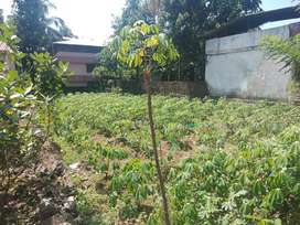 10 Cent Commercial land in Kurichy. Rs.850000/Cent