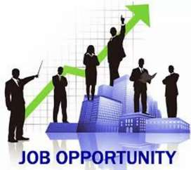 Need data entry operator in urgent basis at Patiala