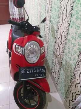 MOTOR HONDA SCOOPY MERAH