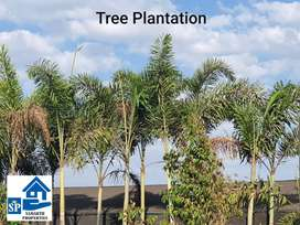 Clear title property near Ranjangaon MIDC, Best investment