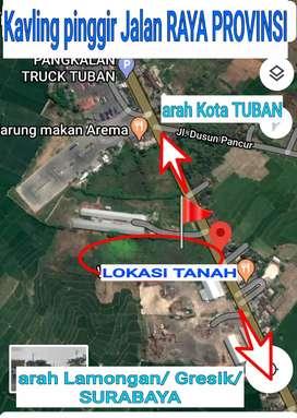 Tuban pinggir jalan raya WIDANG  PLUMPANG(JUAL CEPAT- NEGO)