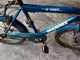 PHOENIX Bicycle for sale