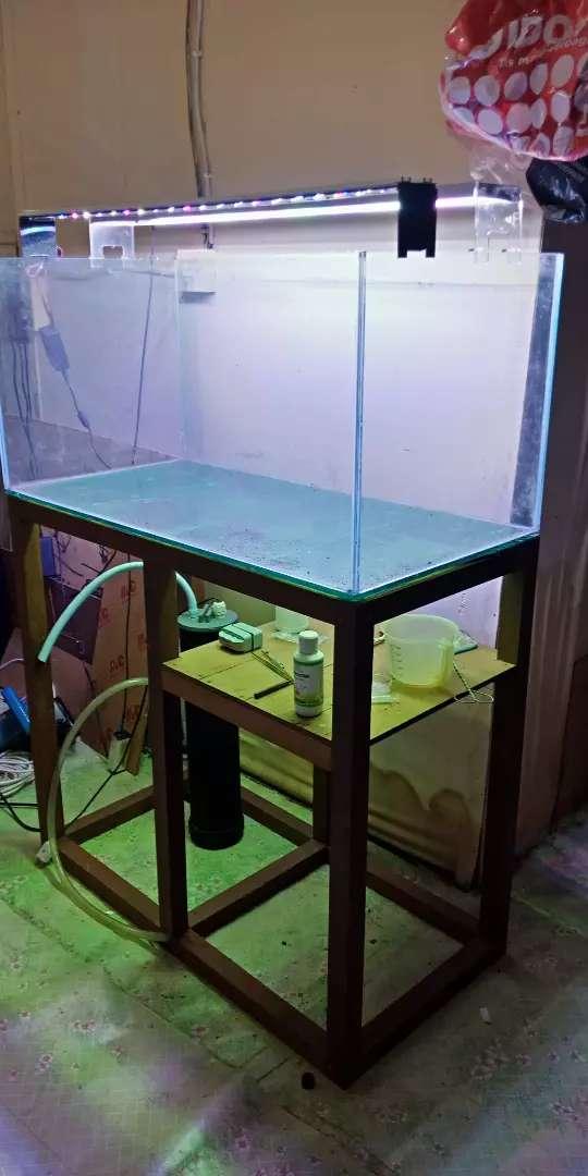 Aquarium set tinggal pakai 0