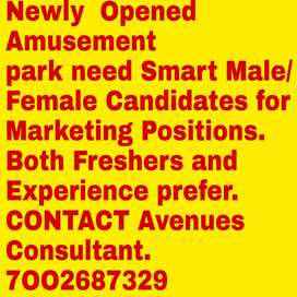 Require Marketing Executive for Newly Opened Snow theme Amusement park