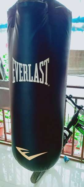 Everlast heavy quality punching bag with gloves