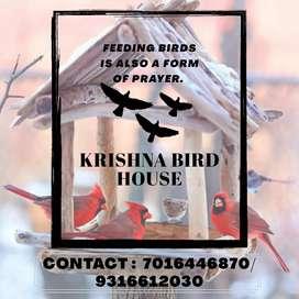 Krishna bird  House