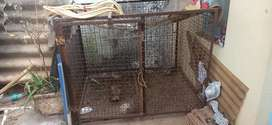 Dog Cage for all types