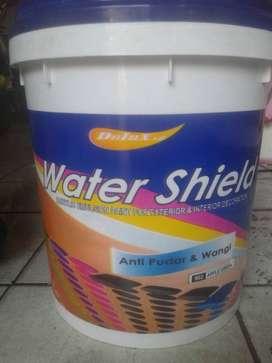 Dulux watter shield