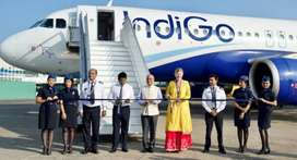 GOOD OPPORTUNITIES WORK WITH INDIGO AIRLINES