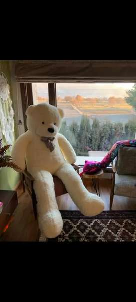 Giant size teddy bear available for birthday, anniversary , valentine