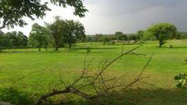 Farm land on lease /rent on national highway 06