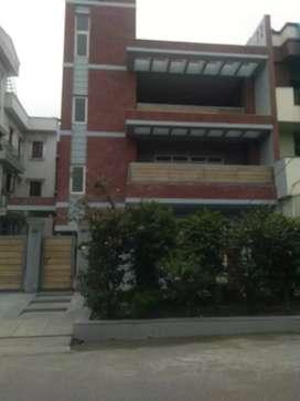 8 Bedroom Kothi for rent in sector 48 Noida