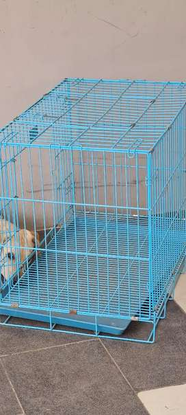 Dog cage for sell