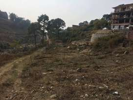 14 Marle Residential Plot for sale at Kesar Bag Colony Palampur