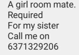 Need a girl room mate