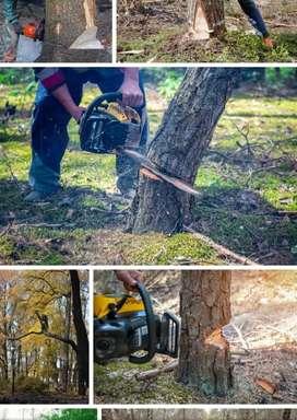 Gardner Tree Cutter