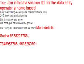 Join info data solution ltd. for the data entry operator a home based