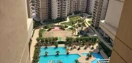 House fr sale 900sqft in singh colony