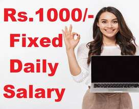 Work from Home Data Entry Jobs - Rs.1000 Fixed Daily Salary