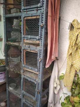Bird breeding cage. urgent selling