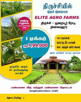 Farm land 1 acre offer for7.99 laks only