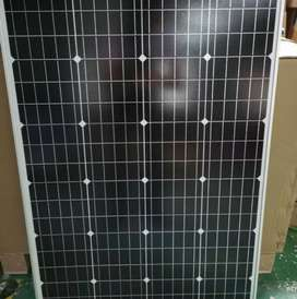 Solar Panel Surya 100wp mono