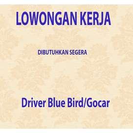 Lowongan kerja Driver Blue Bird/Gocar