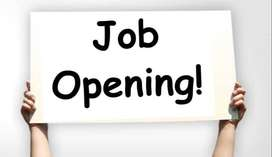 Requirement for Accountant an Back Office job in Ranchi.