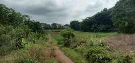Dijual Lahan Produktif 3 Hektar