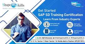 Best SAP SD training in delhi