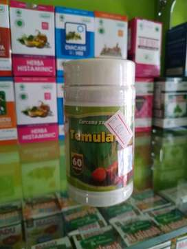 Temulawak plus kapsul isi 60 Asli herbal