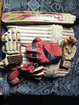 Cricket kit