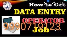 Data entry cum tally operator part time job