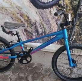 Sepeda BMX Polygon Rogue