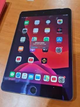 Ipad Mini 4 128gb Wifi + Cellular