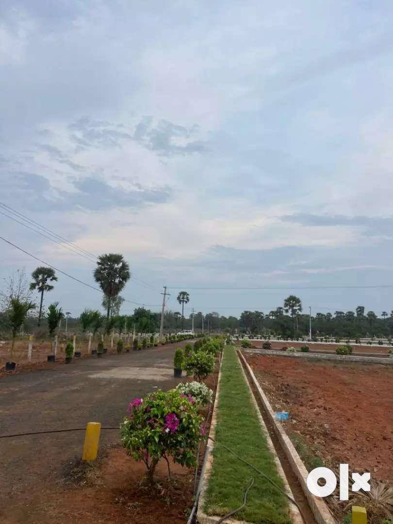 Site for sale amalapuram,nallavnthena