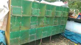 Birds breeding cage
