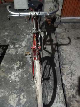Shaheen bicycle