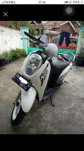 Scoopy 2011 pajak hidup