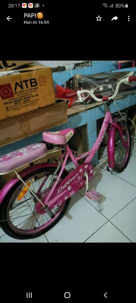 Wym cycle Family warna pink