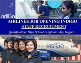 Urgent hiring for ground staff,supervisor,cabin crew