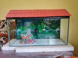 Aquarium2.5ft