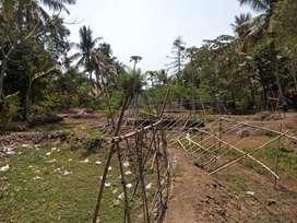 Dijual Tanah Di Karawang 3000 Meter Persegi Cilamaya Kulon