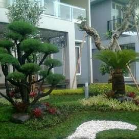 Menerima jasa pembuatan taman rumah/renovasi taman..