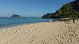 Tanah kaplingan pengantap beach