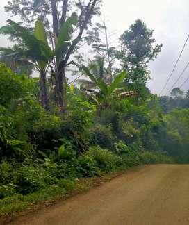 Tanah pinggir jalan murah
