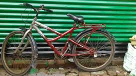 Bicycle @1500
