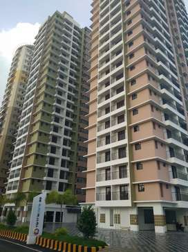 1.bhk fully furnished studio gated communitty flatt at aluva area