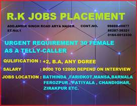 R. K JOBS placement bathinda