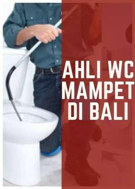 Jasa perbaikan wc mampet